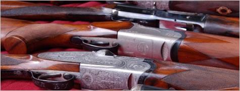 Sen rossi d ascola ddl modifiche alla normativa per la - Porta d armi uso sportivo ...