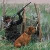 caccia appostamento