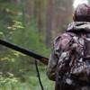 cct cacciatore