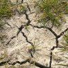 siccità zolle di terra