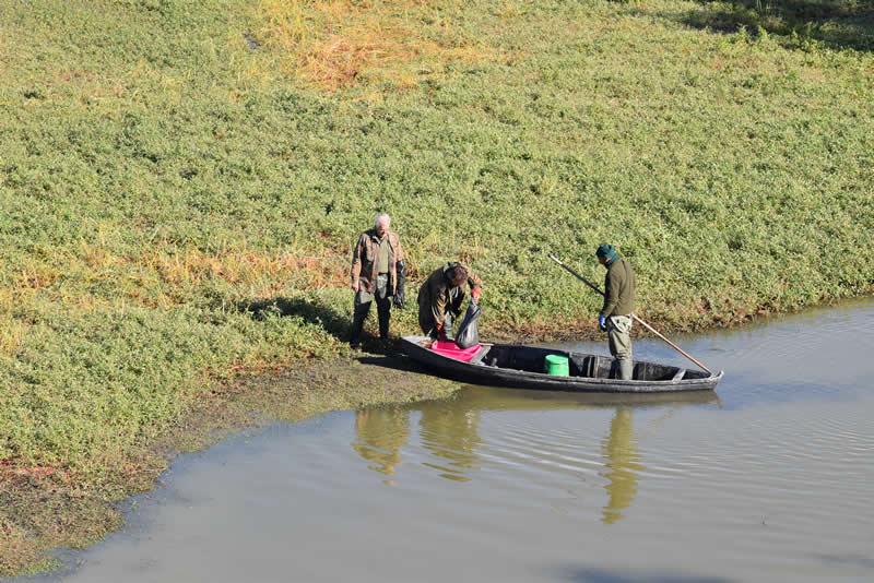 Valle Mandriole - Cacciatori con barchino durante il recupero degli anatidi (foto R. Aguzzoni)