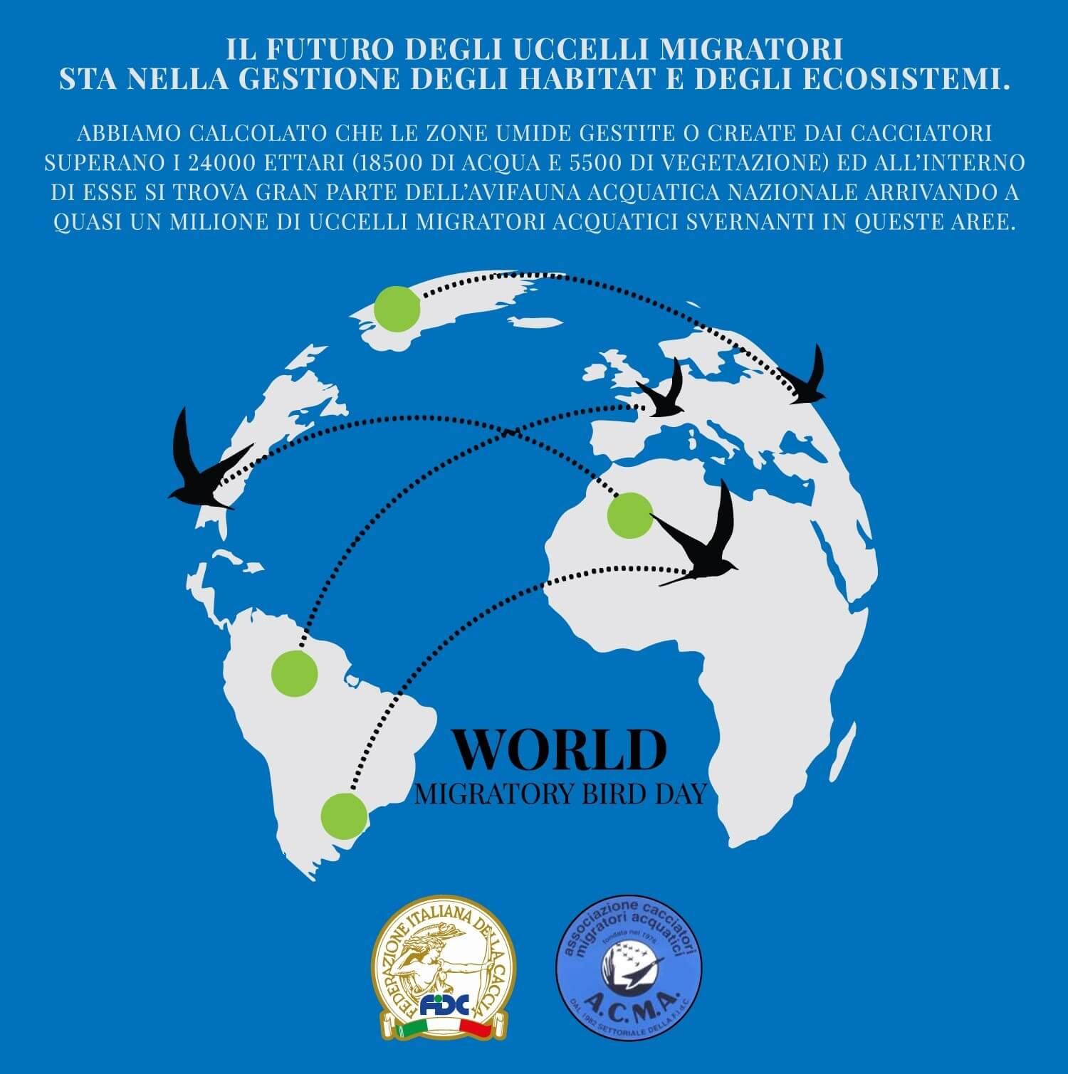 Locandina Giornata mondiale degli Uccelli Migratori